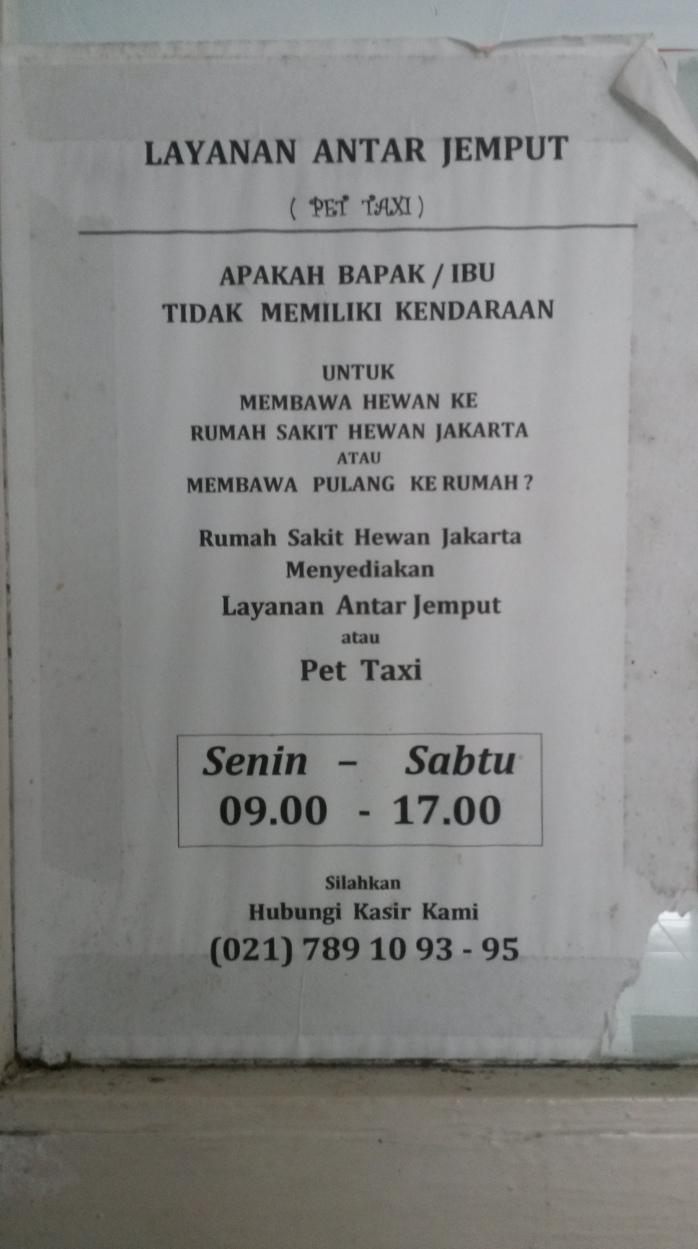 Dokter Hewan Jakarta